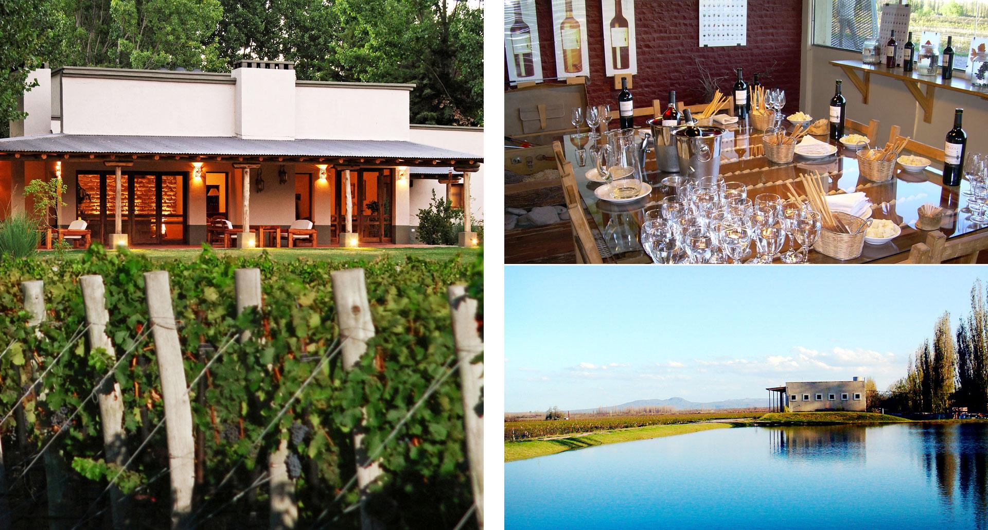 Algodon Wine Estates - boutique hotel in San Rafael