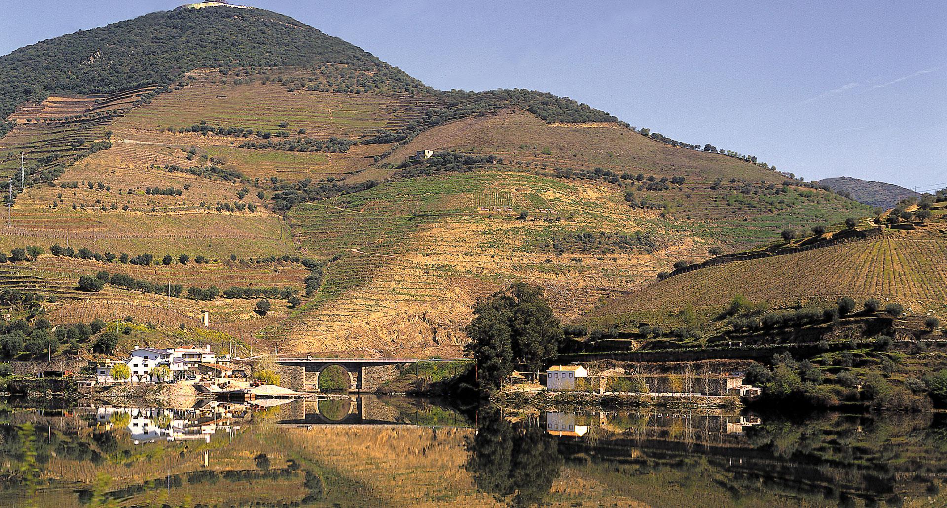 Douro 41 Hotel & Spa - boutique hotel in Castelo de Paiva