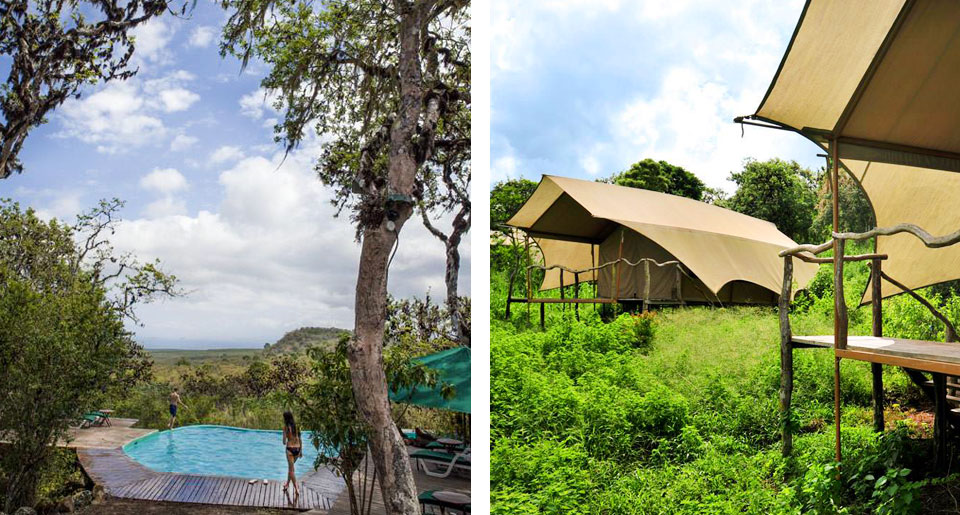 Galapagos Safari Camp - boutique hotel in Galapagos Islands