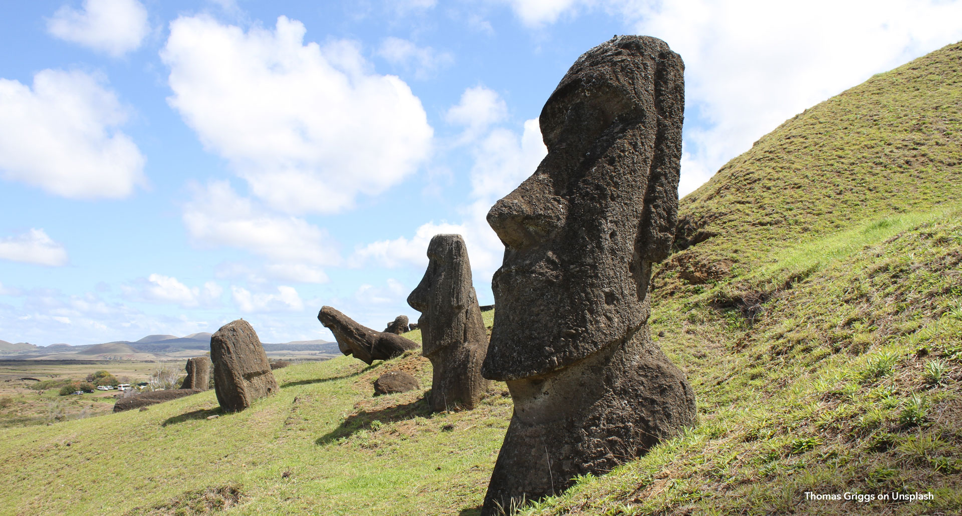 Moai head detail