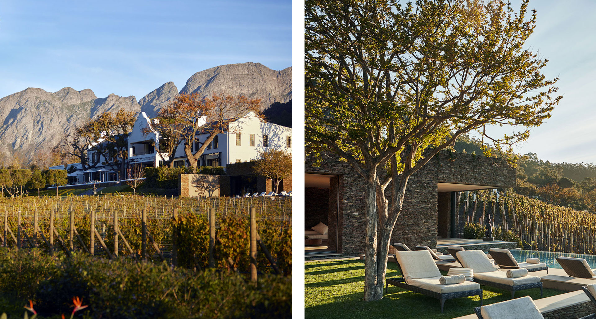 Leeu Estates - boutique hotel in Franschhoek
