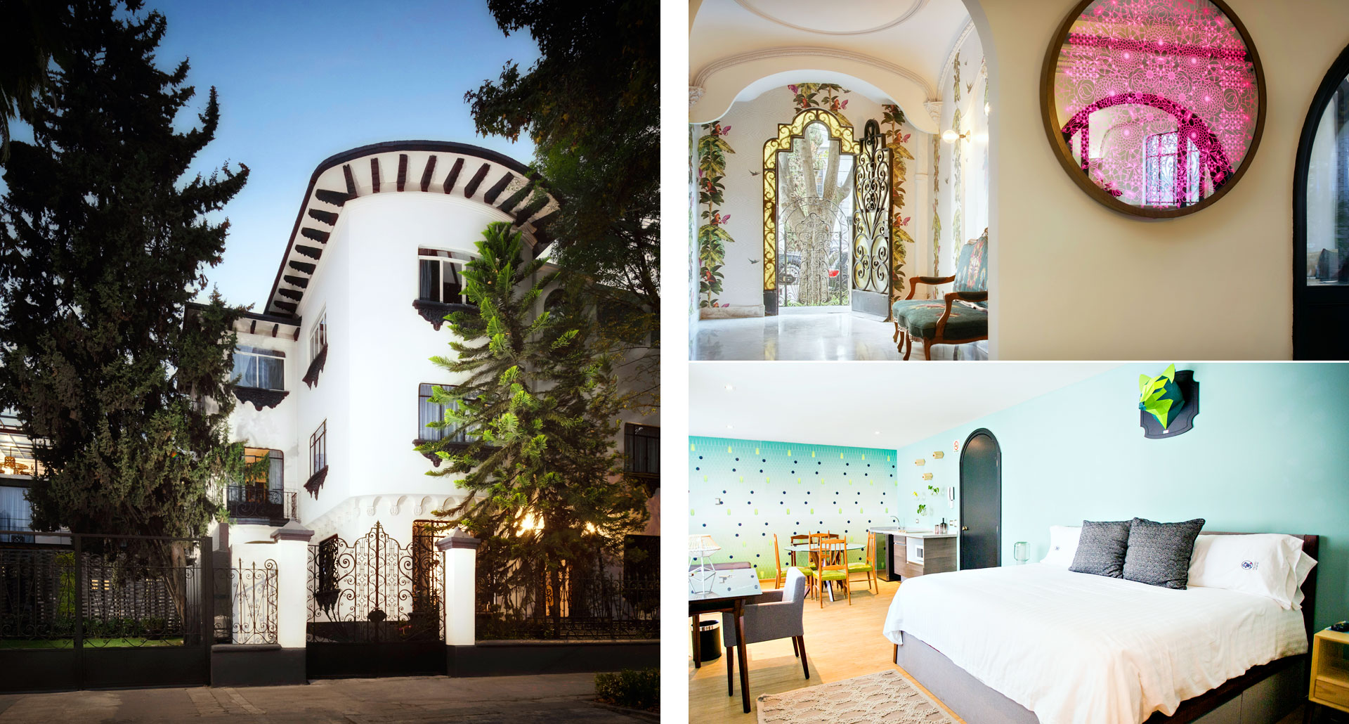 Pug Seal Boutique B&B Polanco - luxury boutique hotel in Mexico City