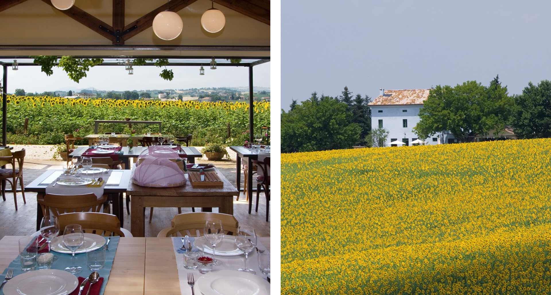 Casa Azzurra - 5 Stelle boutique hotel Loro Piceno, Italia