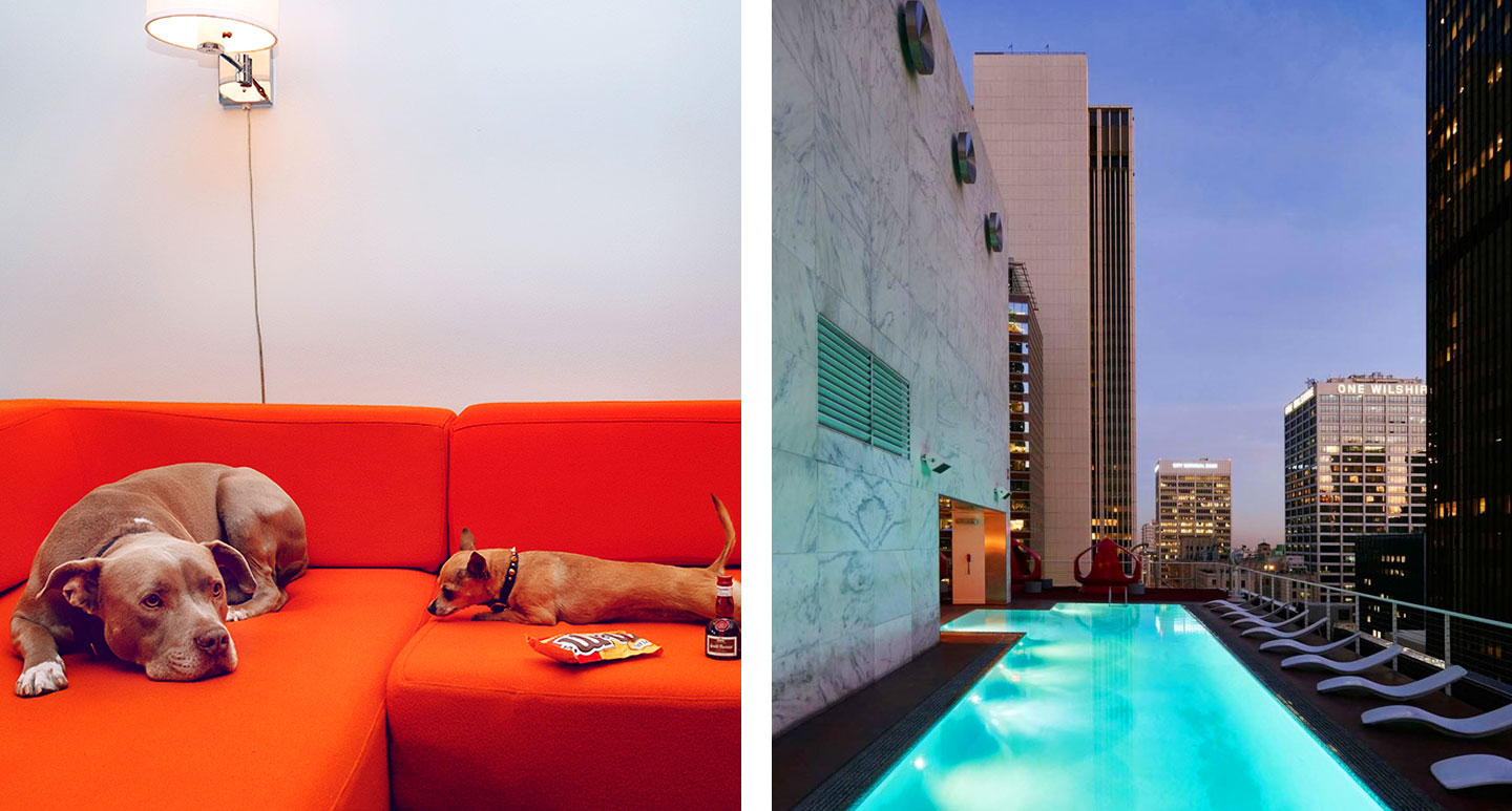 The Standard Downtown LA - boutique hotel in Los Angeles