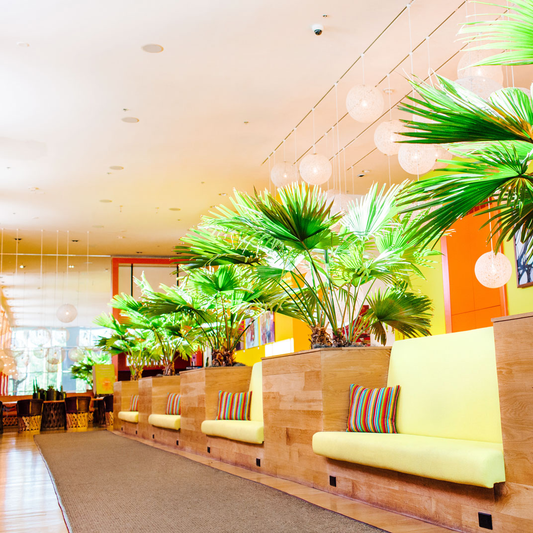 The saguaro scottsdale phoenix scottsdale arizona 29 for The tablet hotels